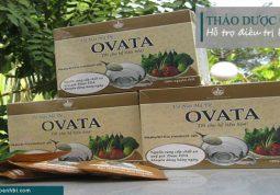 Thảo dược OVATA -Thực phẩm chức năng hỗ trợ điều trị bệnh trĩ